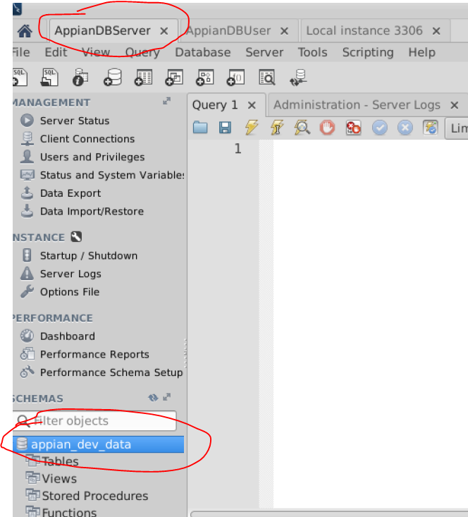 Can not start JBOSS with appian 17 2 - Administration